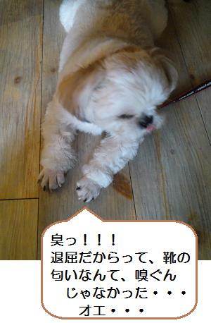 Cafe4_4