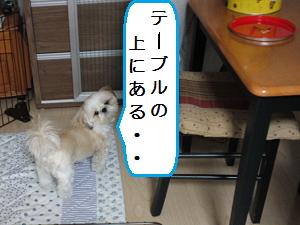 Yoru2