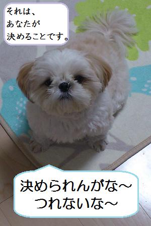 Torimingu4_2