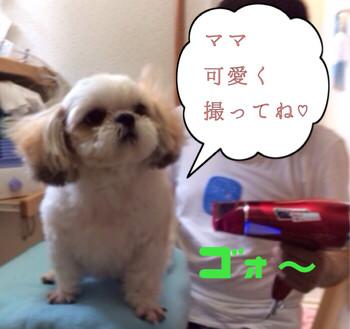 201407052_2