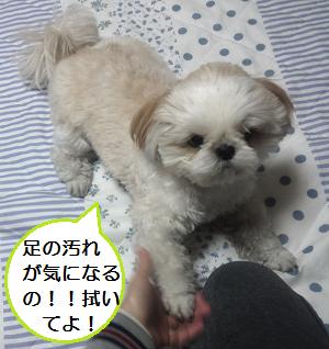 Fukigen2