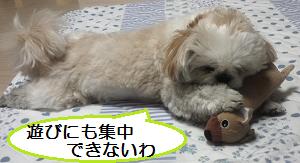 Fukigen3