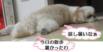 Atsu1