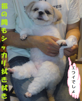 Fuki2