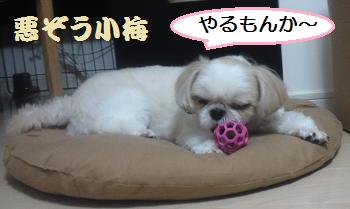 Ball5