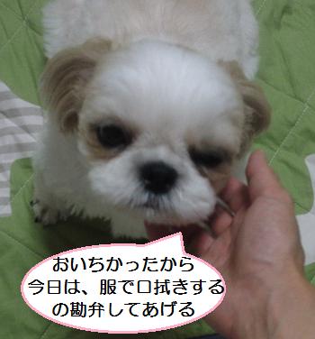 Oyatu3_1