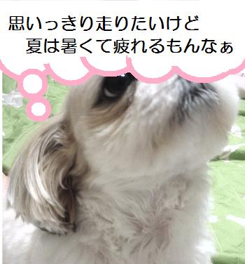 Yobu3