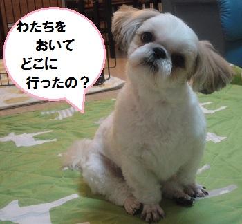 Itou1