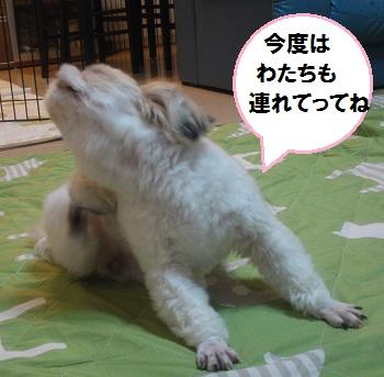 Itou2