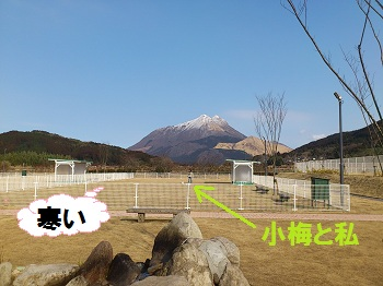 Yufuh8_2