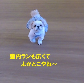 Yufuh95_4
