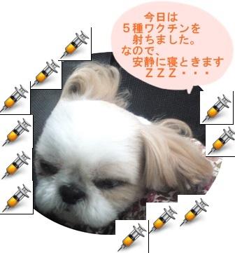 201306211_2